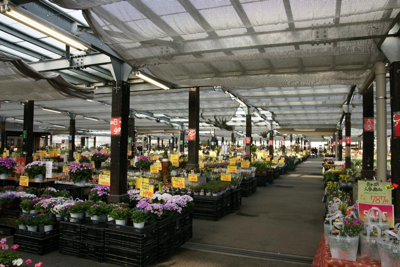 なばなの里-花市場